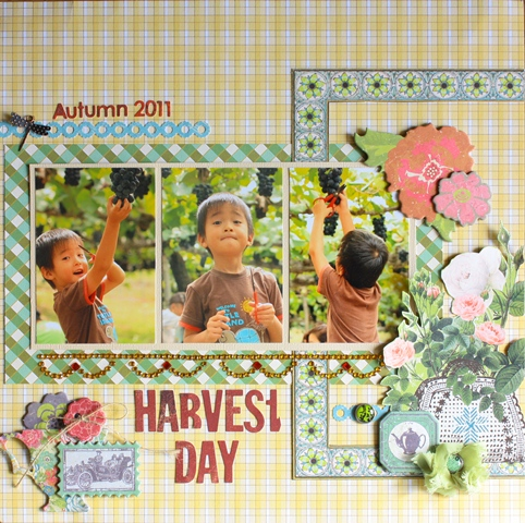 harvest day-NOV'11②
